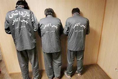 بررسی جرم و جنایت در ایران با استفاده از چند الگوی اقتصادی