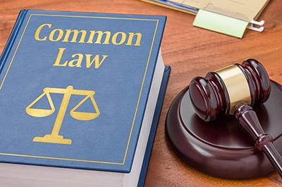 مقایسه قاعده اقدام باقاعده پذیرش خطر در نظام کامنلا
