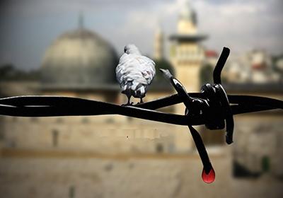پیامهای امارات، لبنان، بحرین و مغرب به مناسبت روز همبستگی با فلسطین